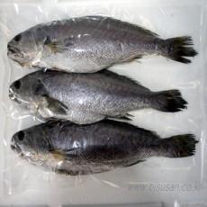 신안산 반건조 민어 (40cm~45cm) 3마리