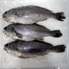 자연산 반건조 민어(30cm 전후) 3마리