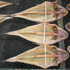 반건조 양태(장대)  大(40cm~45cm) 3마리